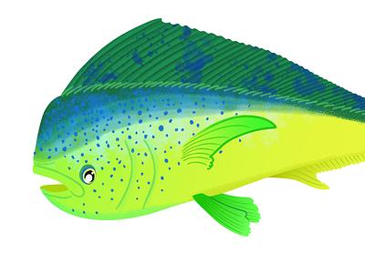 Mahi Mahi dorado fishes fishing sea ocean tropical fish green illustration