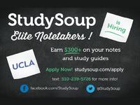 Studysoup Flyer