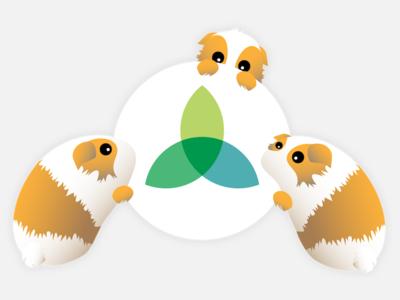StudySoup mascot Adler design graphic mascot studysoup
