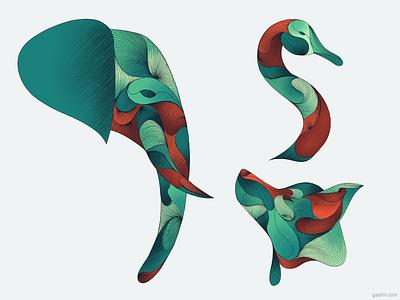 Animals animals wolf swan elephant illustration