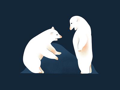 Polar Bears drawing illustration bears bear polar
