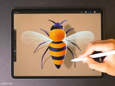 Bee 🐝 bee illustraion drawing