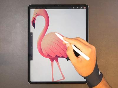 Flamingo drawing icon flamingo illustration