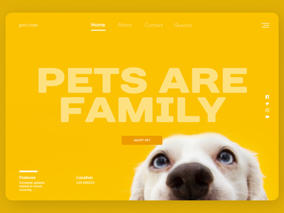 Pet Online website uxdesign uidesign shopify designs app web ux ui design