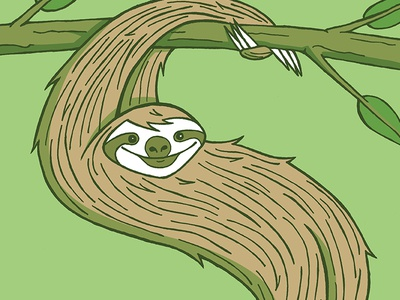 S is for Sloth illustration animal sloth
