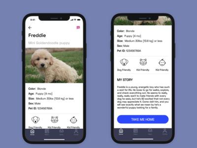 Pet Adoption App - Pet Profile ios x iphone app concept pet adoption app weeklyui ux adiom dashinsky weekly product design exercise
