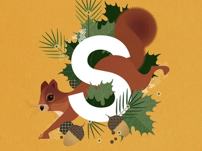 Squirrel plants animal sally caulwell alphabet wildlife nature vector texture folioart digital illustration