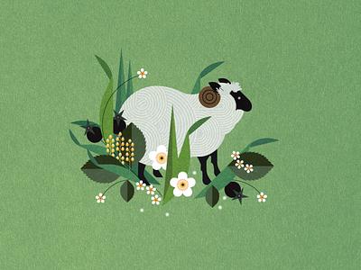Sheep nature sally caulwell floral animal botanical vector folioart digital illustration