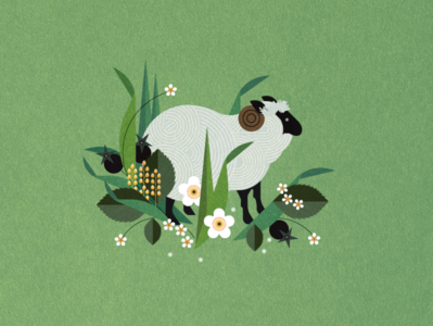 Sheep nature sally caulwell floral animal botanical vector folioart digital illustration