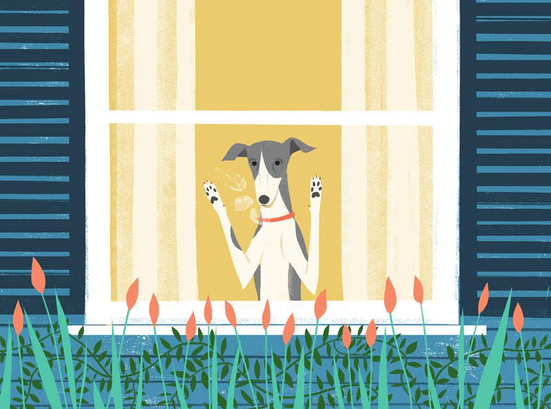 Dog sam kalda dog editorial folioart digital illustration