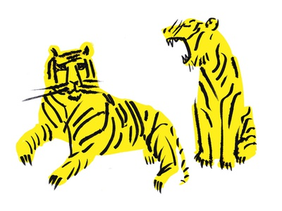 Tigers childrens ink painting drawing illustration nature animals tigers