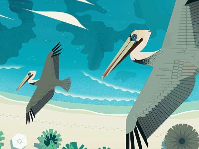 The Caribbean caribbean cruise owendavey design art illustration
