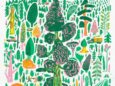 Coniferous botanical nature nicholasstevenson illustration woodland forest trees coniferous screenprint