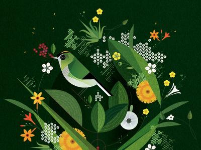 Goldcrest geometric sally caulwell folioart pattern floral green graphic plant nature decorative bird digital illustration