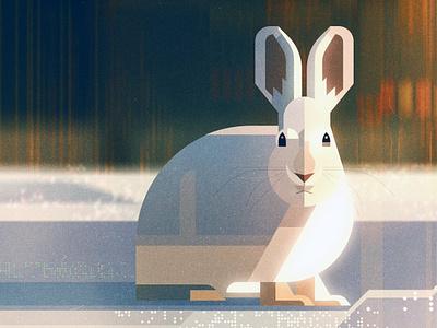 Hare james gilleard wildlife snow hare animal texture folioart digital illustration