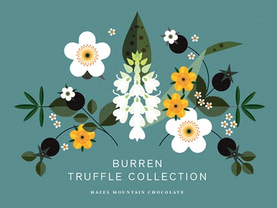 Truffle Collection graphic leaves packaging illustration digital floral botanical folioart sally caulwell