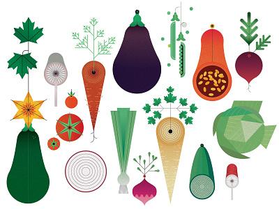 Vegetables sally caulwell colour vegetables vector geometric food folioart digital illustration
