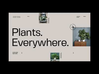 Plant Gallery Blog experience type design scroll loading menu video ui ux mp4 animation type minimal typography