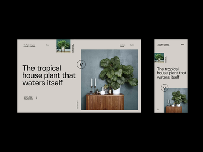 Responsive Plant Article type design video animation scroll ux ui design plants photography article blog typography menu type