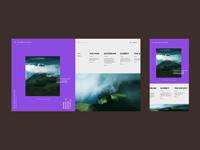 Online responsive visual diary