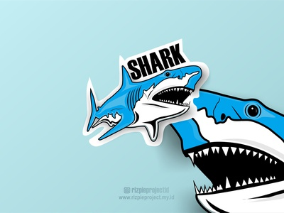 Shark Logo motion graphics 3d ui vector illustration animation promotion banner graphic design design branding logo