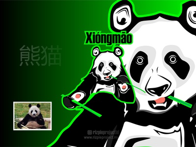 Panda Icon green ui vector illustration animation promotion banner graphic design design branding logo