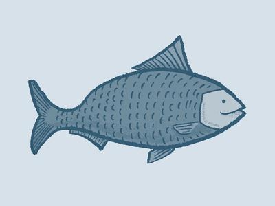Fish illustration shading blue fish line art sketch drawing