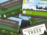 Trees in NC - Winter Storm Infographic