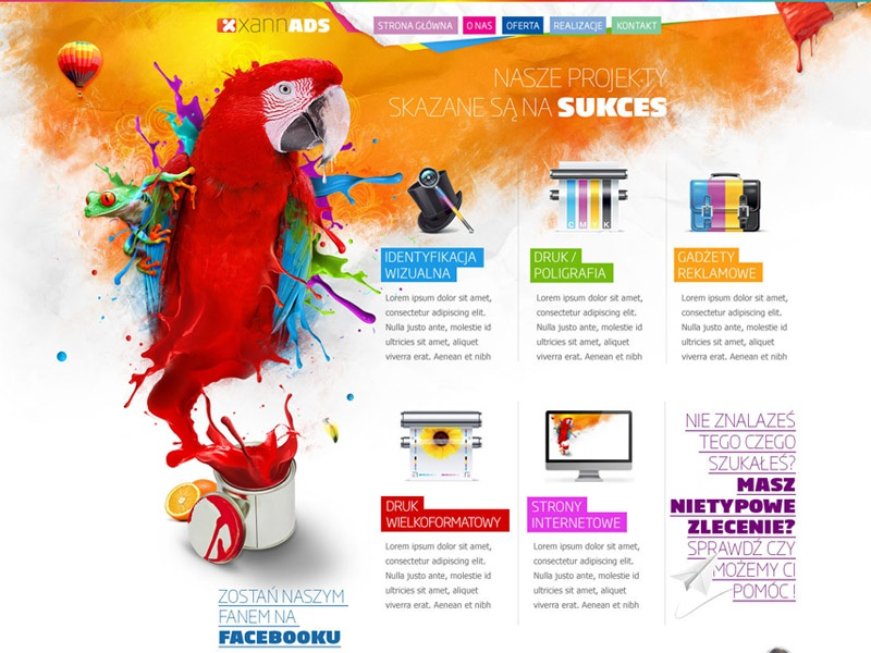 Print and Advertising parrot colorful web design web design print advert advertising