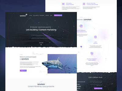 SEO landing page website gradients web flat landing minimal dark black link building content marketing seo
