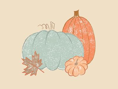 Perfectly Pumpkin eat autumn fall texture illustration pumpkin squash
