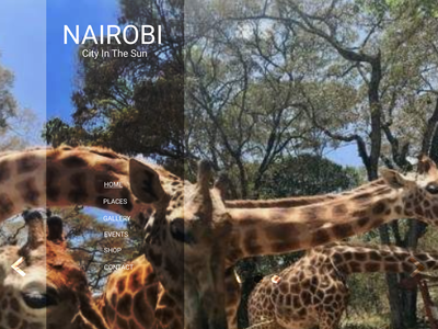 Nairobi Pt2 ux web flat ui design