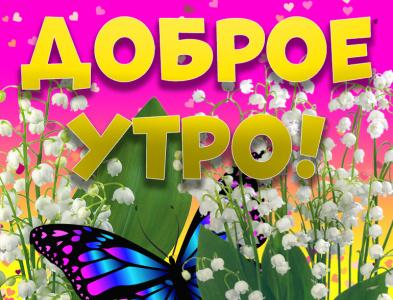 Открытка с добрым весенним утром! бабочки бабочка цветы ландыши с добрым утром картинка открытки доброе утро открытка доброе утро