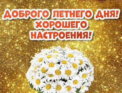 Доброго летнего дня! Открытка! Картинка! Добрый день! доброго дня добрый день хорошего настроения ромашки цветы illustration design открытки картинки открытка картинка