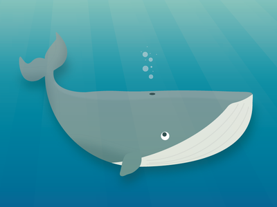 Whale light ray ocean sea water whale illustration