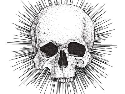 Dotwork skull drawing illustration ink pen micron skull