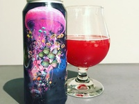 Collective Arts Brewing; Electric Jellyfish