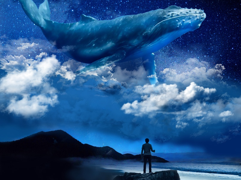 Whale Tales photoshop night clouds whale