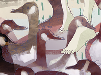 Geese feet fine art print