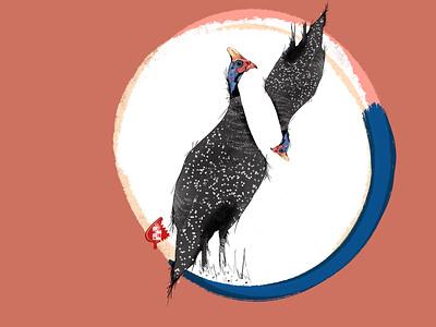 Tarentaal birds guinea artwork artist illustration digitalart