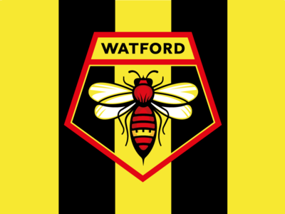 Watford FC redesign concept