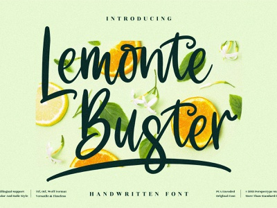 Lemonte Buster - Cute Handwritten Font web vector ux ui typography logo illustration icon design branding app