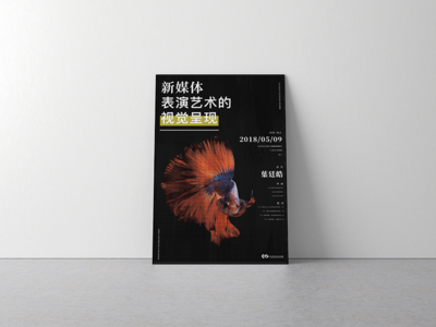 Visual Presentation of New Media Performance Art