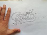 Balto sketch