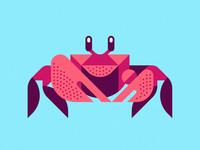Up for Crabs ben stafford crabby aquatic ocean marine life sea life animal art geometric art geometric illustration crab ghost crab