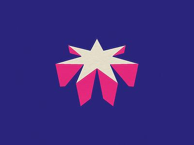 7 Points geometric shadow sharp 7 pointed star star