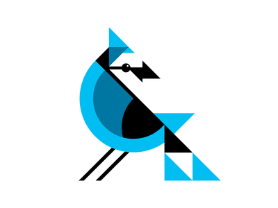 Cyanocitta cristata bluejay geometric rebound bird illustration cyan shapes ben stafford blue jay