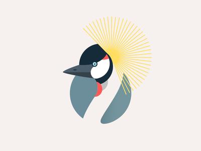 Balearica regulorum exotic gray crowned crane bird illustration africa