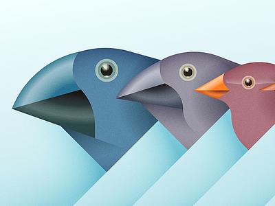 Made You Finch answers magazine editorial illustration galapagos beak evolution birds finches darwin