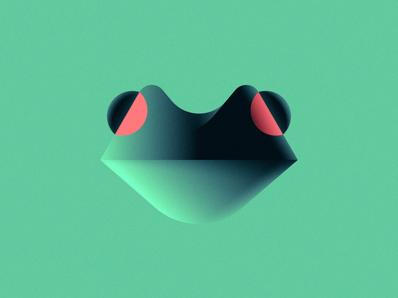 Raconte-Moi Une Histoire geometric simple gradient illustration amazon tree frog frog m83